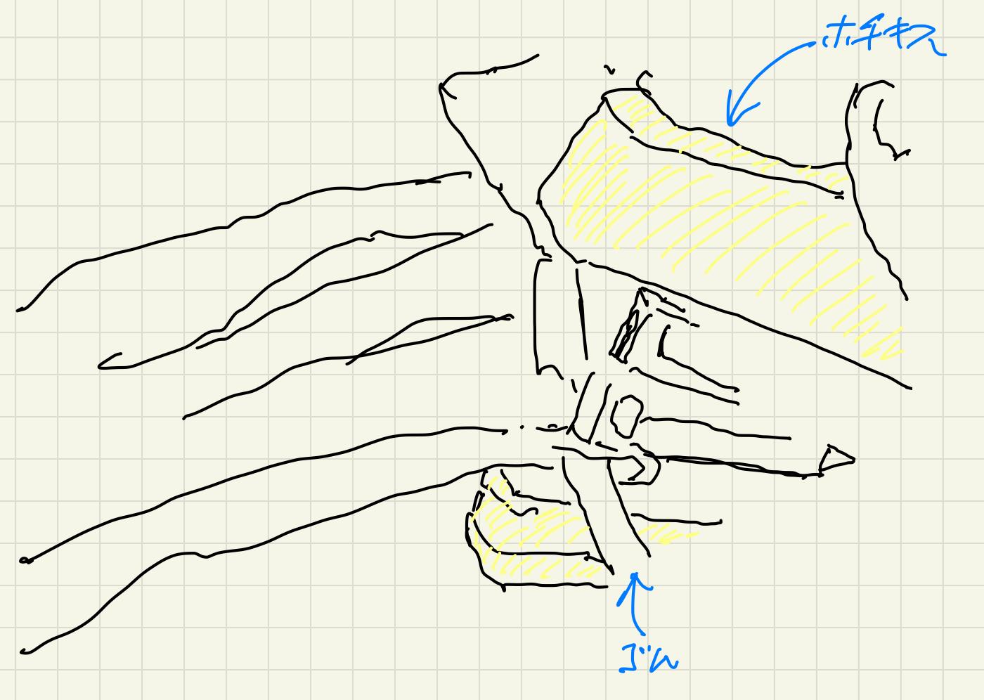 簡易手作りマスクの作り方4