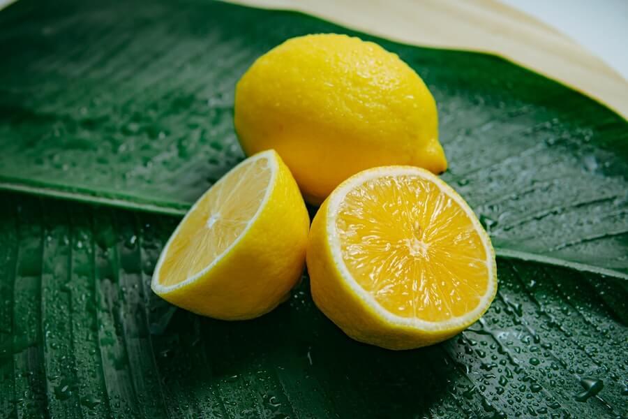 方 レモン 切り